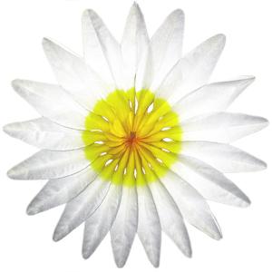 Бумажное украшение 50 см Цветок белый