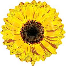 Шар 61 см Фигура Цветок Гербера желтая