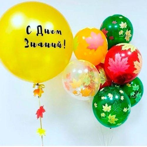 Комплеккт для фотосессии из воздушных шаров День знаний