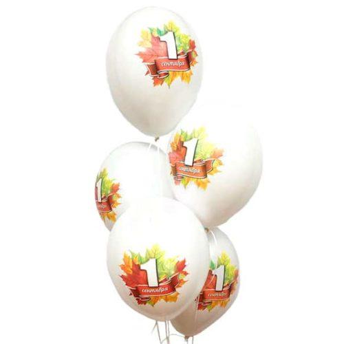 Связка из воздушных шаров 1 сентября 5 штук
