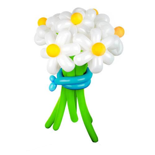 Букет из 7 белых ромашек с голубой лентой из воздушных шаров