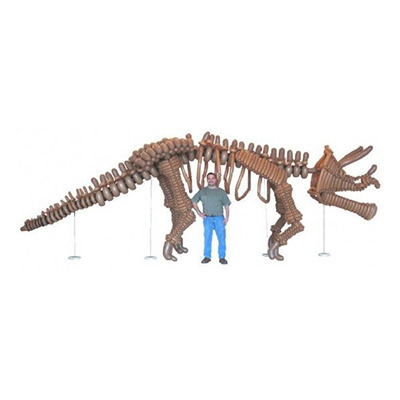 Скелет динозавра трицератопса из воздушных шаров