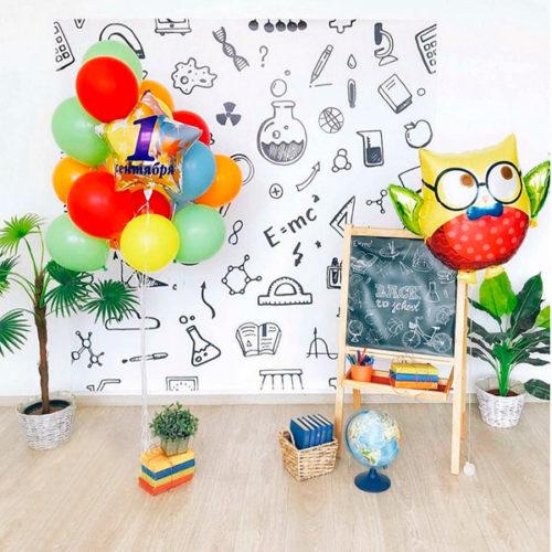 Комплеккт для фотосессии и воздушных шаров на 1 сентября Фонтан с Совой