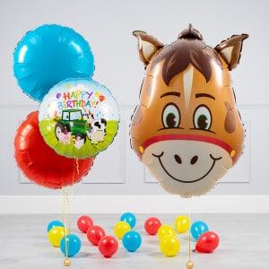 Комплект из шаров шаров Голова Лошади и Круги и шары