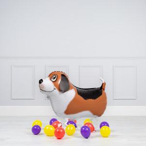 Комплект из шаров Ходячая фигура Бигль и шары на пол