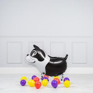 Комплект из шаров Ходячая фигура Бостон-Терьер и шары на пол
